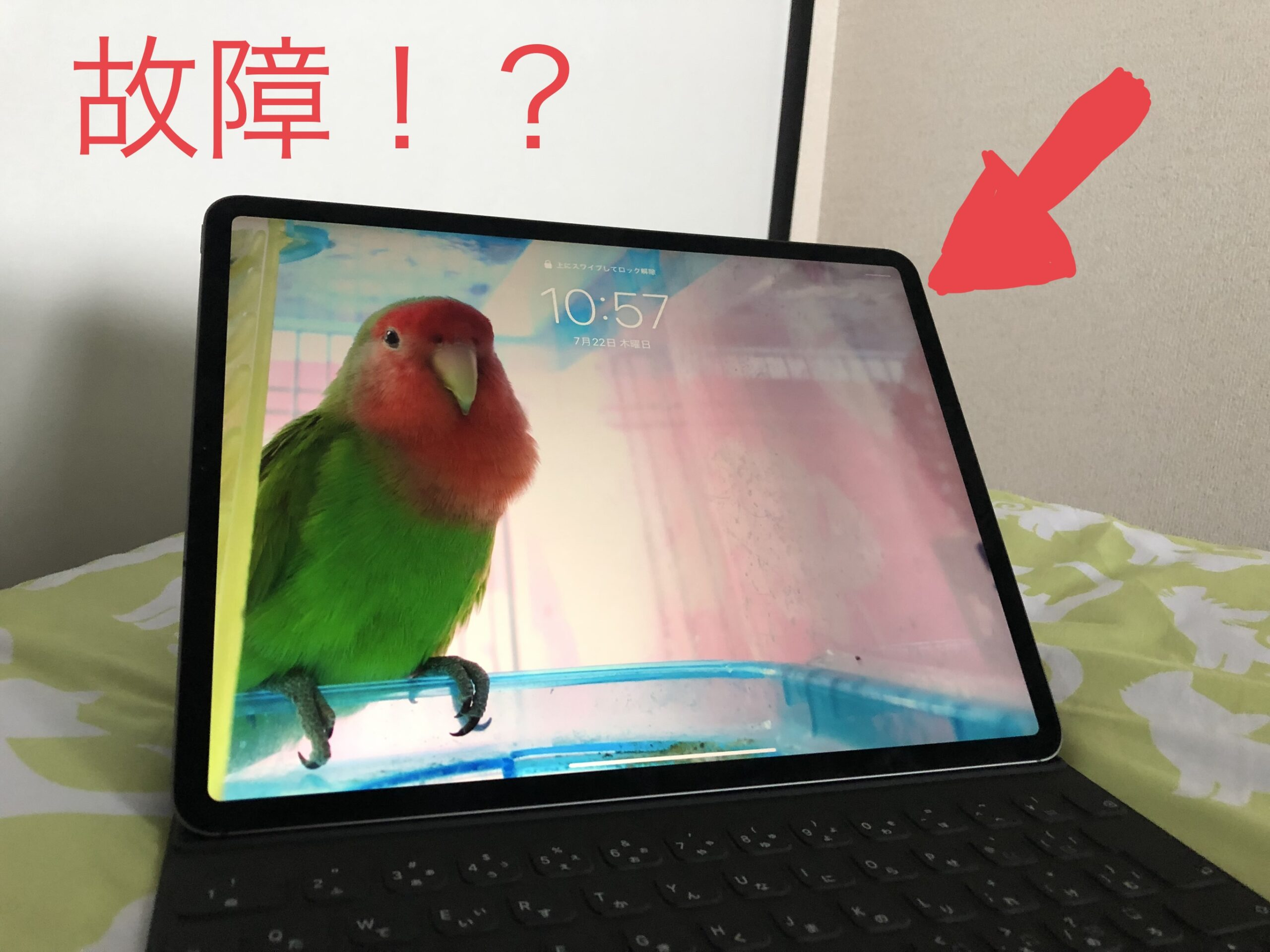 Read more about the article 【問題発生】愛用しているiPadが充電を受け付けなくなった→直った