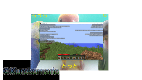 Read more about the article Minecraft[PC]が出来ない!!グラフィックエラー。。。[解決]